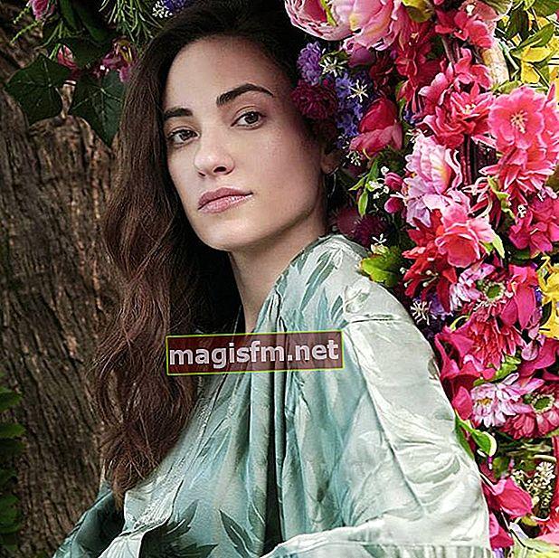 Melissanthi Mahut (Actrice) Wikipedia, Bio, Âge, la taille, Poids, Copain, Valeur nette, Famille, Les faits