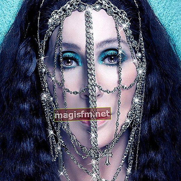 Cher (Sänger) Wiki, Bio, Alter, Größe, Gewicht, Familie, Karriere, Ehemann, Kinder, Vermögen, Fakten