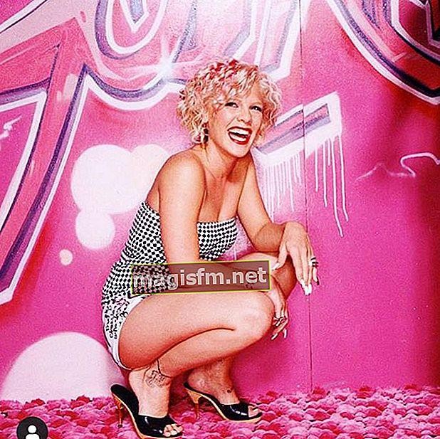 Pink (Sänger) Wiki, Bio, Alter, Größe, Gewicht, Ehemann, Kinder, Vermögen, Karriere, Fakten