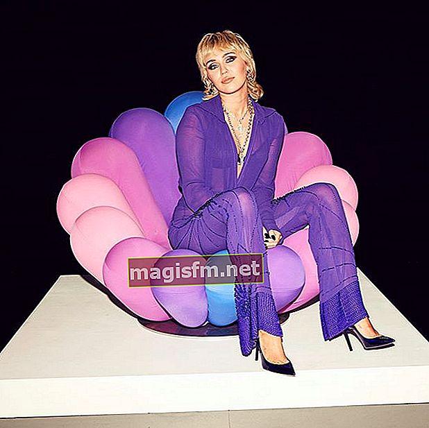Miley Cyrus (Sänger) Wiki, Bio, Größe, Gewicht, Maße, Freund, Vermögen, Familie, Fakten