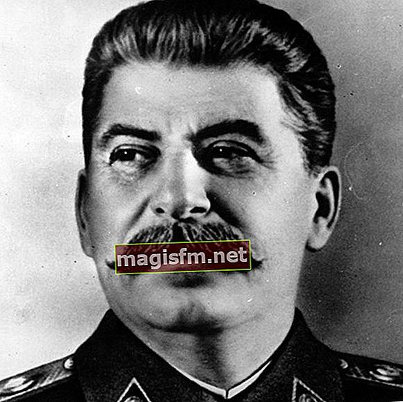 Joseph Stalin (Politiker) Wiki, Bio, Alter, Größe, Gewicht, Frau, Kinder, Ethnizität: 12 Fakten über ihn