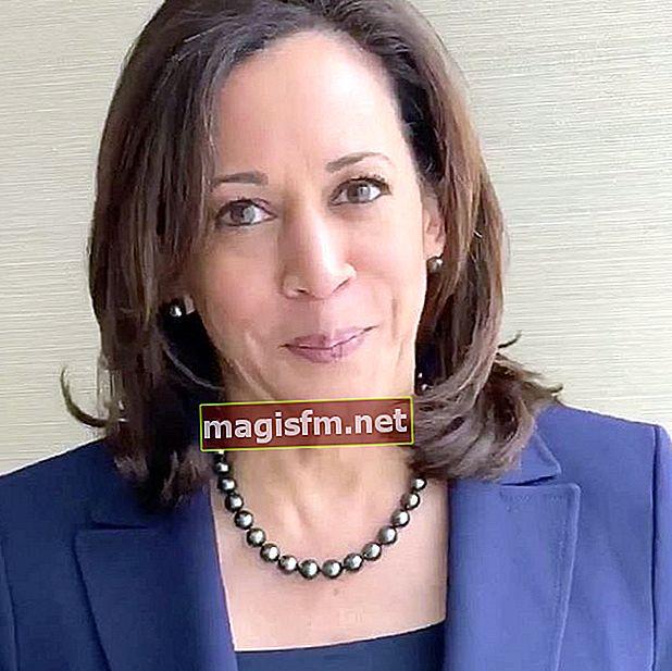 Kamala Harris (Politiker) Wiki, Bio, Alter, Größe, Gewicht, Vermögen, Ehepartner, Familie, Karriere, Fakten