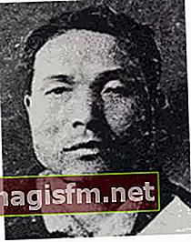 Yoshie Shiratori (Mörder) Wiki, Bio, Alter, Gefängnis, Nationalität, Familie, Fakten